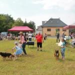 výstava psíkov 168