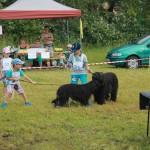 výstava psíkov 208